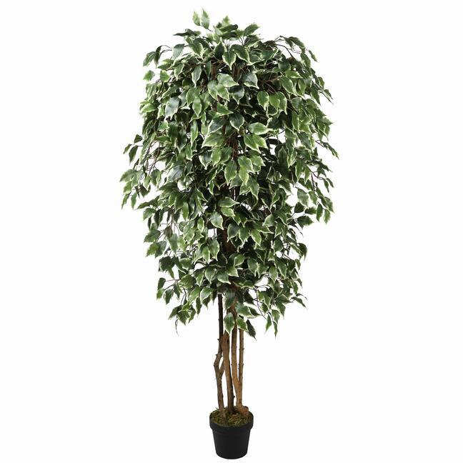 Árbol artificial Fikus Benjamin verde blanco 170 cm