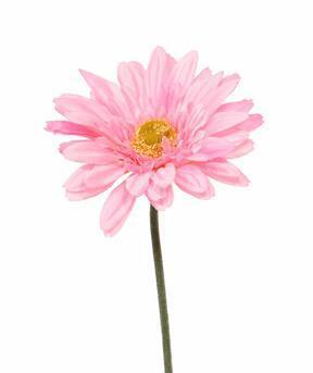 Flor de gerbera artificial rosa 60 cm