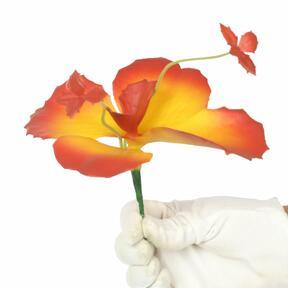 Flor de mariposa 20 cm