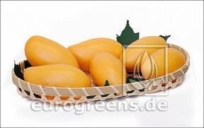 Mango artificial amarillo