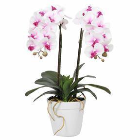 Orquídea Artificial 43 cm