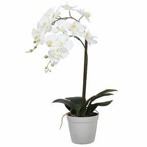 Orquídea artificial blanca 65 cm