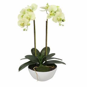 Orquídea de mantequilla artificial 50 cm