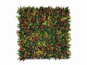 Panel de flores artificiales Leucadendron - 50x50 cm