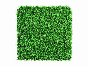 Panel de hoja artificial Haya - 50x50 cm