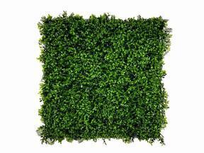 Panel de hoja artificial Helecho - 50x50 cm