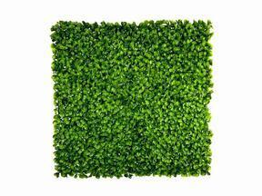 Panel de hoja artificial Peperomia - 50x50 cm