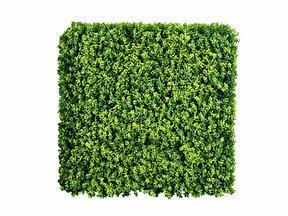 Panel de hoja caduca artificial Buxus - 50x50 cm