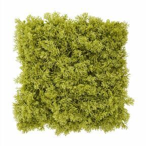 Panel de musgo verde artificial - 25x25 cm