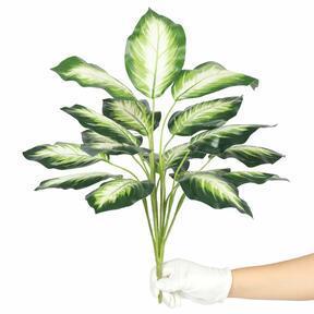 Planta artificial Dífenbachia blanca 50 cm
