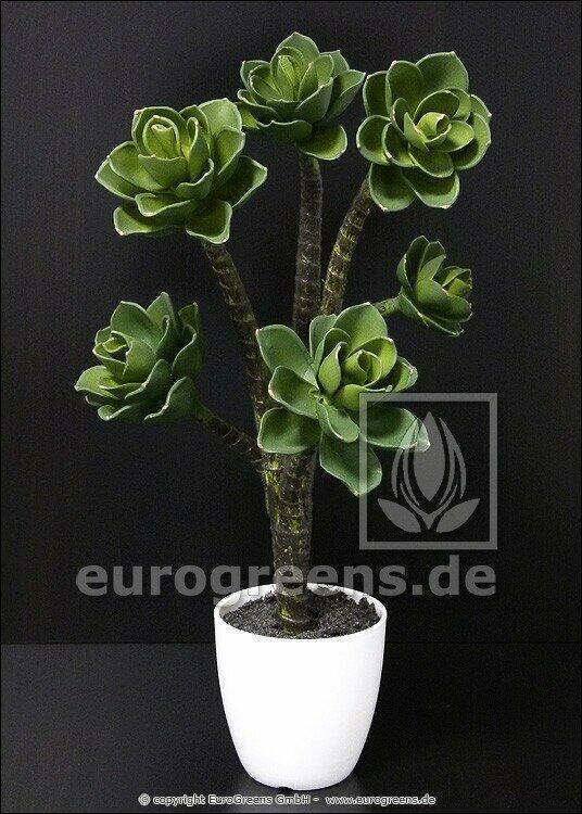 Planta artificial Eševéria 55 cm