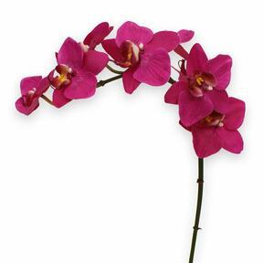 Planta artificial Orquídea violeta 80 cm