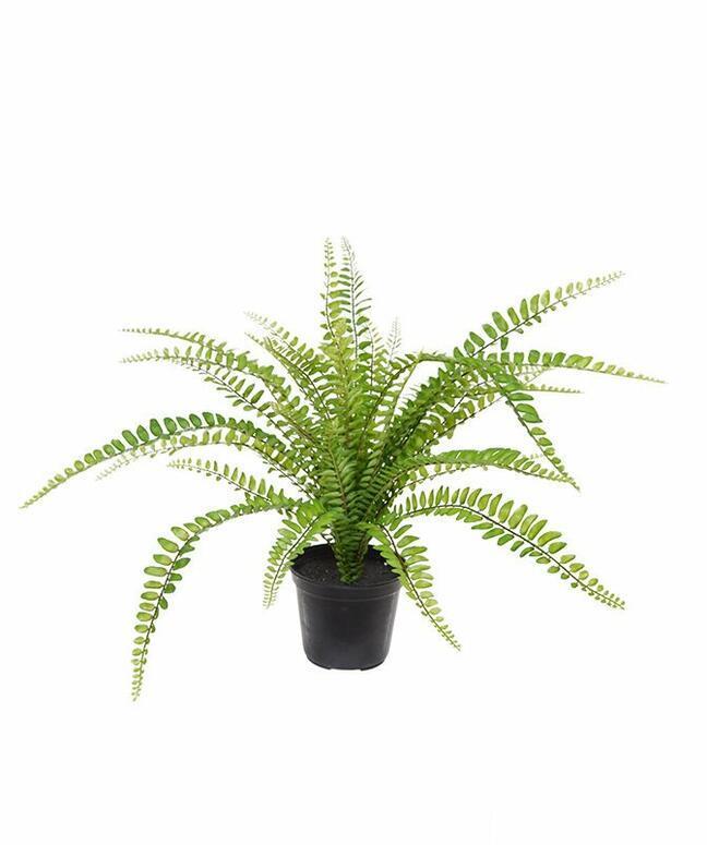 Planta artificial Spleenwort 45 cm
