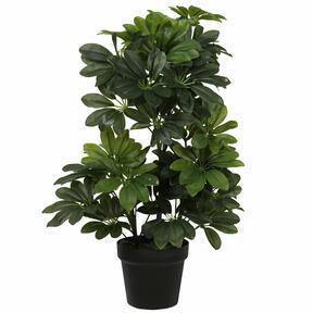 Planta Shefler artificial 60 cm