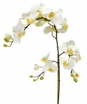 Rama artificial de Orquídea blanca 110 cm