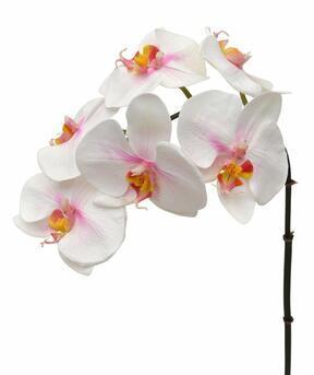 Rama artificial de Orquídea rosa-blanca 55 cm
